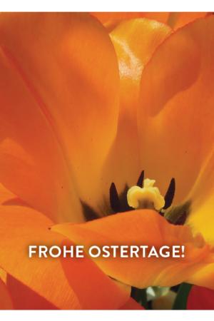 2018-03-26-08_45_20-osterkarte-loetscher-2018